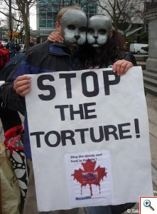 Stop the torture - antisealing event in Vancouver