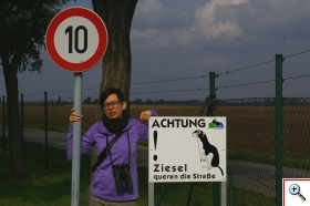 znak na polu